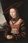 CRANACH, Lucas the Elder Portrait of a Woman dfg oil painting picture wholesale