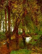 Charles Blechen Woodland with Brook Sweden oil painting reproduction